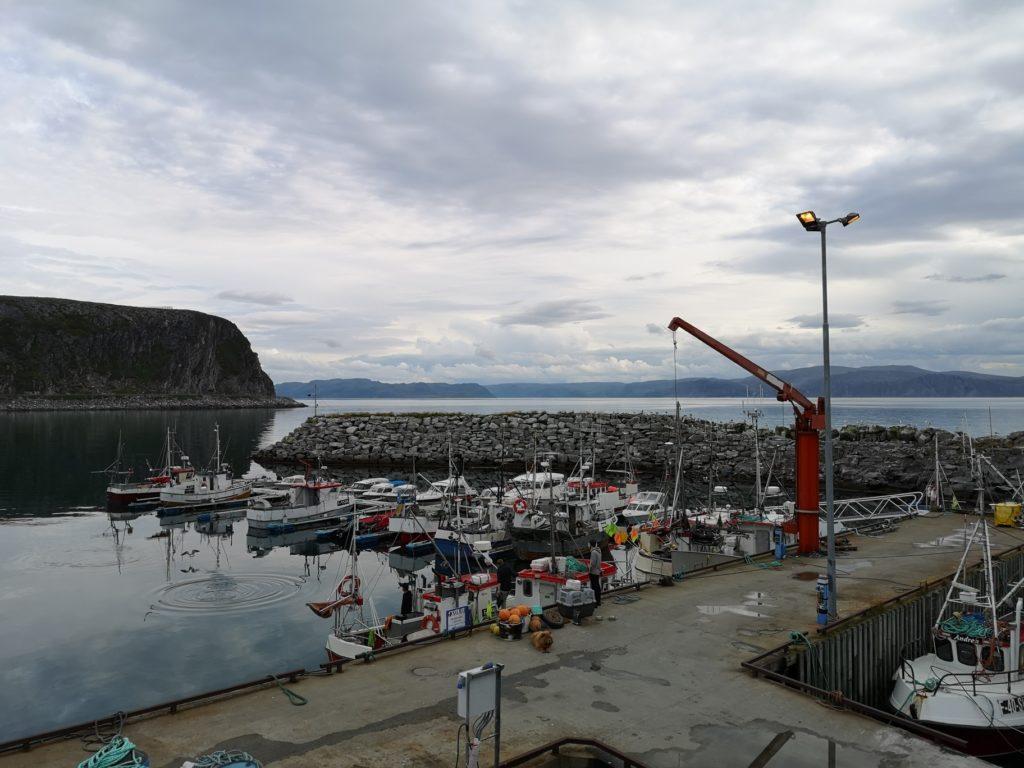 Dyfjord